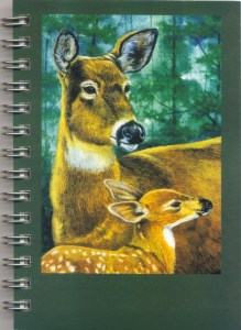 Cover image - White-tailed Deer Mini Journal