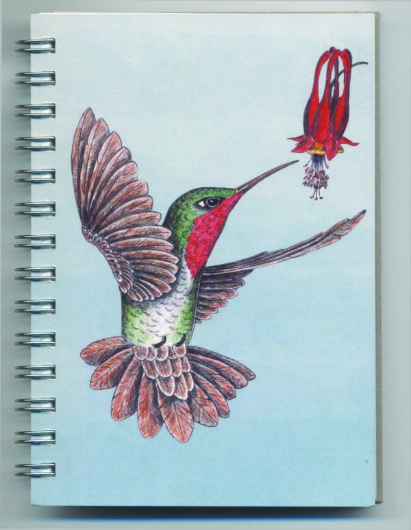 Cover image - Ruby-throated Hummingbird Mini Journal