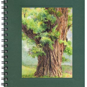 Black Locust Notecard