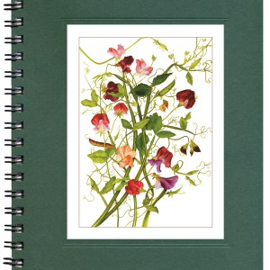 Sweet Peas Notecard