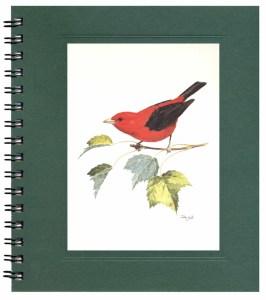 Scarlet Tanager Notecard