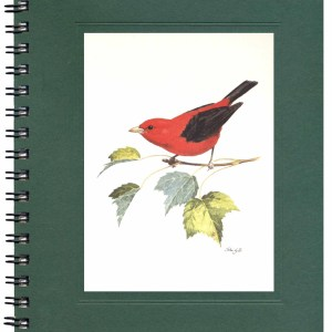 Scarlet Tanager Notecard