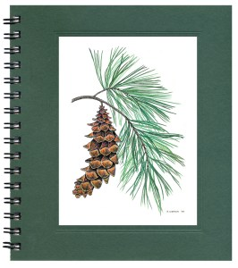 White Pine Journal