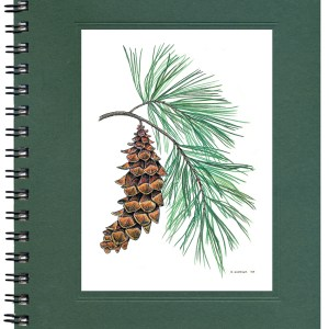 White Pine Journal