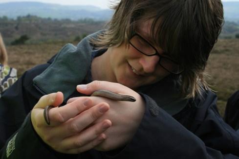 Acorn Ecology Training, ecology training, reptile course