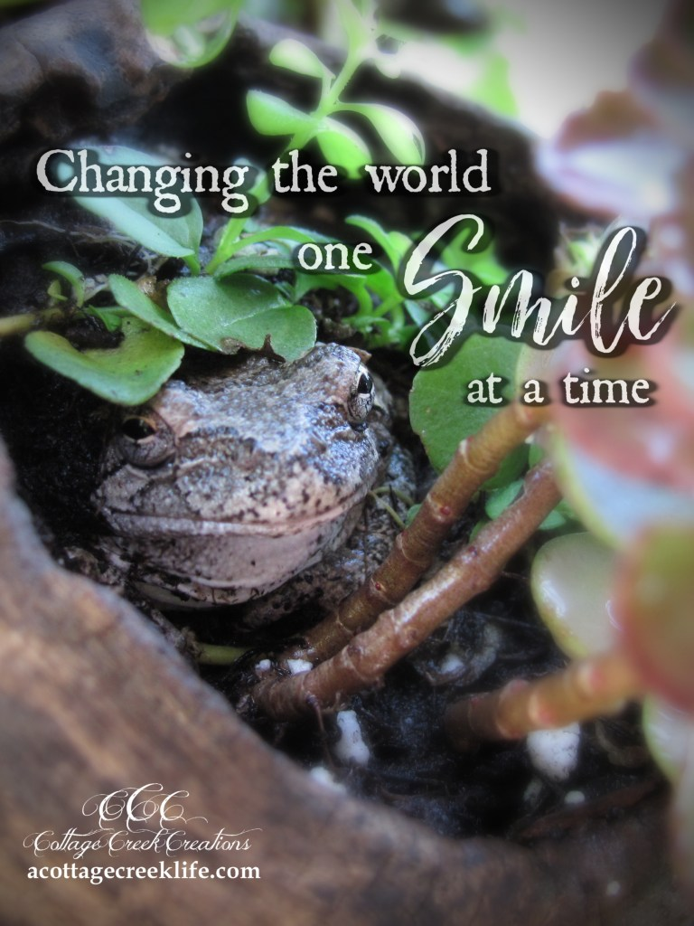 Changing the World One Smile at a Time