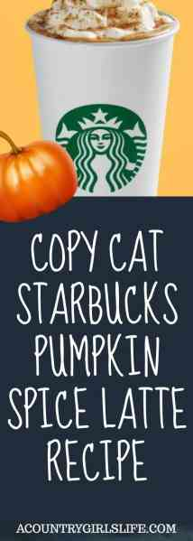 DIY Copy Cat Pumpkin Spice Latte Recipe