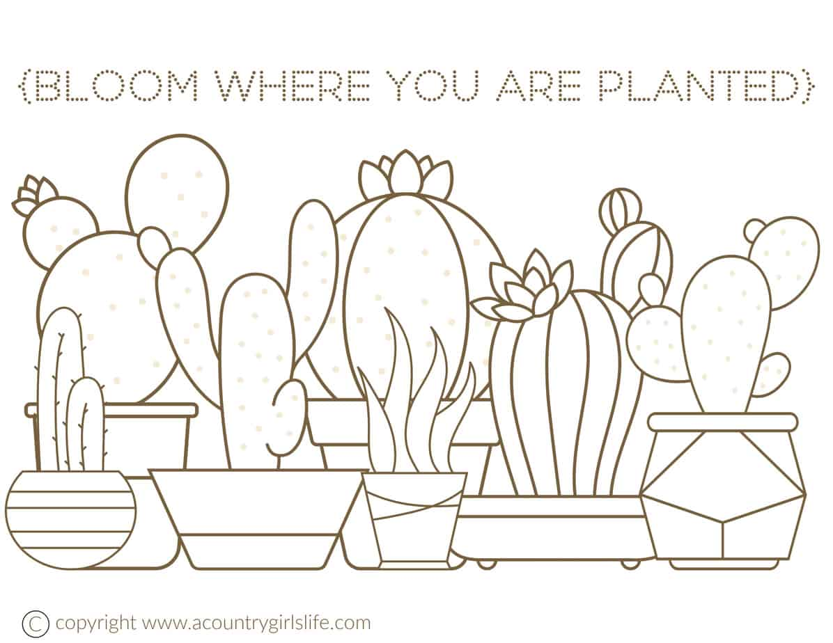 image about Free Printable Cactus Coloring Pages called No cost Printable Grownup Coloring Web pages-\
