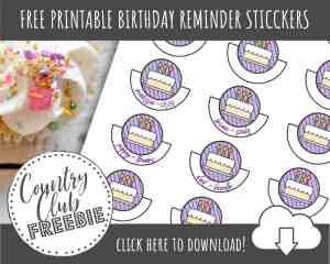 Cute & Colorful Birthday Reminder Stickers for Your Planner or Calendar!