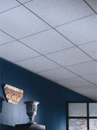 Acoustical Ceilings Grid And Fiberglass Insulation