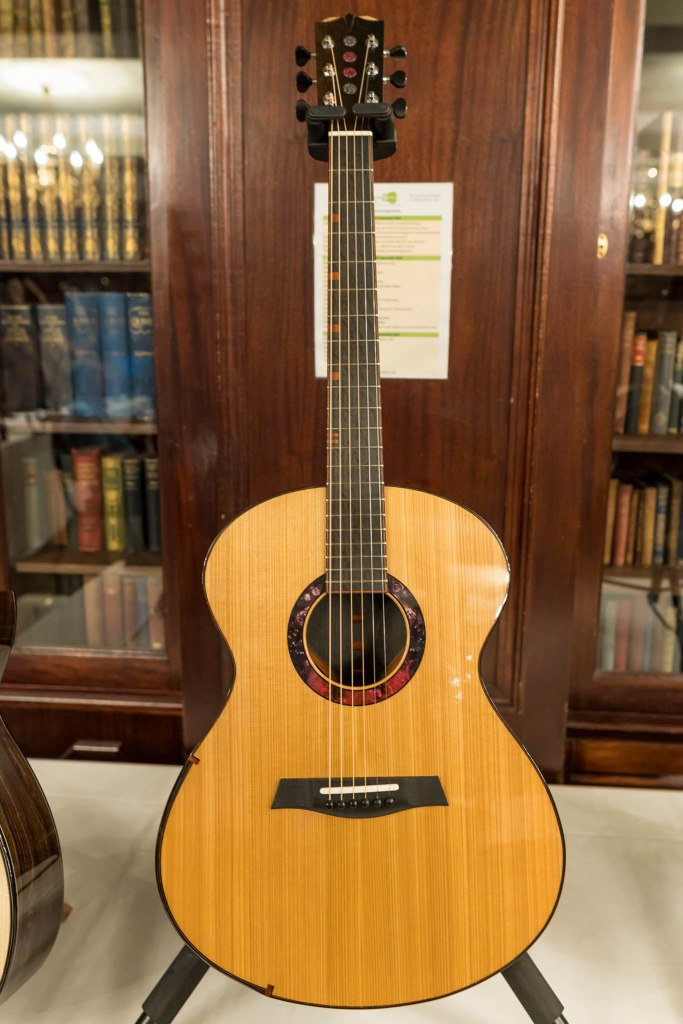 Turnstone Guitar Company TG model. Full front shot.