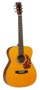 Tanglewood-TW-40-O-AN-Review