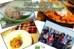"Desafio - ACPP ""A Natureza do Arroz"""