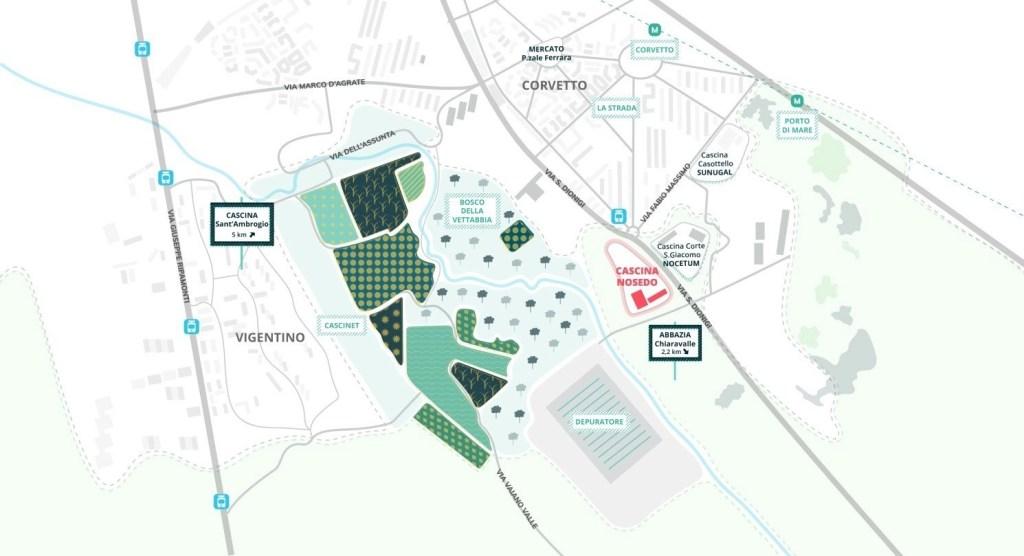 Acquaponica: progetto OpenAgri a Milano