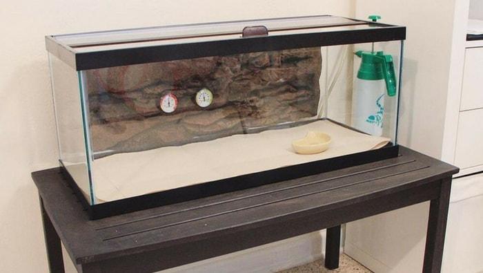 vasca di quarantena