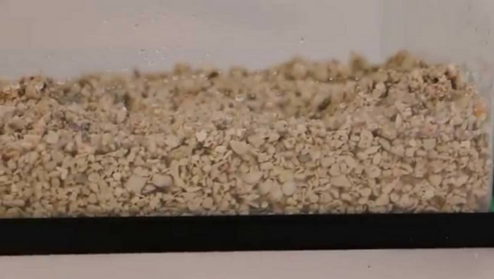 aragonite substrato