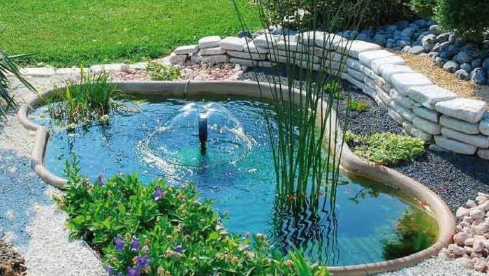 Pesci per laghetto da giardino affordable koi pietra for Piscine laghetto per pesci