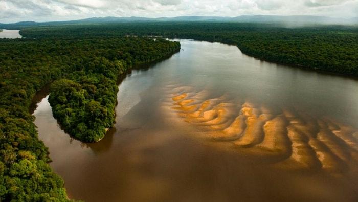 fiume Essequibo