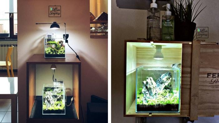 illuminazione nano acquario