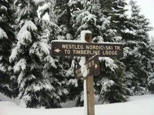 TimberlineSign