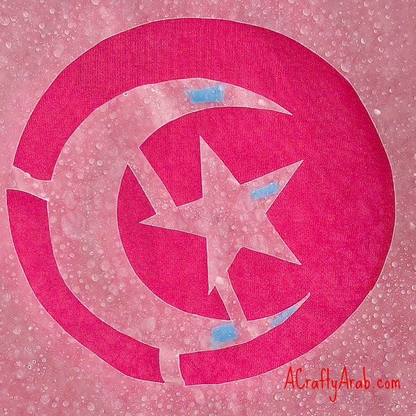 ACraftyArab Tunisian Flag Bleach Tshirt3