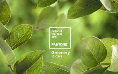 Pantone® Greenery é a cor do ano de 2017
