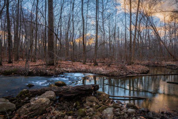 Photo of Kauffman Nature Sanctuary