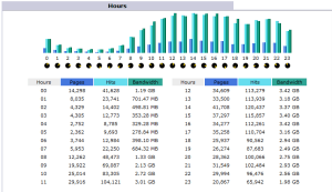 Hourly traffic distribution in AWStats.  While our traffic peaks during normal working hours, we have steady usage going on until about 1 AM, after which point it crashes pretty hard.  We could use this data to determine  how much virtual reference staffing we should have available during these hours.