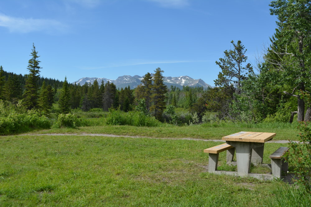 Picnic table in grassy area with Rocky Mountains visible in distance