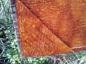 Acropatch-Panneau-mural-Shimmer quilt-Couleurs d'automne-Motif-Quilting-Montagnes russes-fil-uni-orange foncé-étiquette