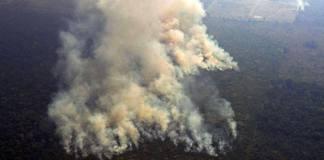 Las asperezas entre Brasil y los países europeos que buscan ayudar a combatir los incendios en la Amazonia se agudizaron el martes y pusieron en riesgo la unidad mundial sobre cómo proteger una región que es vista como fundamental para la salud del planeta.