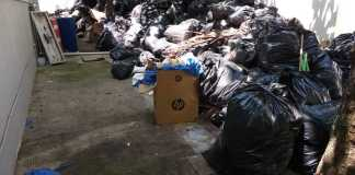 La Procuraduría Estatal de Protección al Medio Ambiente (PMA) ordenó al Ayuntamiento de Veracruz a retirar a brindar nuevamente el servicio de limpia pública a las oficinas de Gobierno incluidos hospitales.