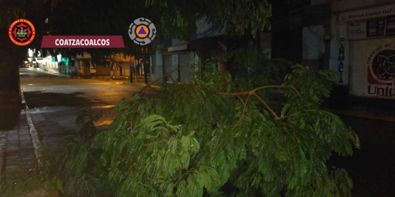 Autoridades de Coatzacoalcos informaron que, durante la noche y madrugada de este domingo, se hicieron diversos recorridos en distintos puntos de la ciudad, principalmente en las partes bajas, debido a las fuertes lluvias registradas en el municipio.