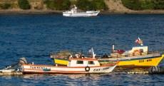 Fishing boats in Castro, Chiloe