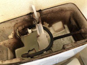 トイレのタンクの中のカビ