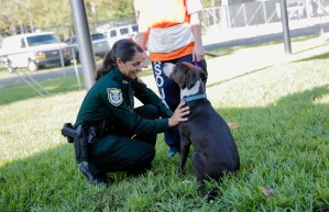 Paws on Parole Unleashed Detention Deputy petting dog