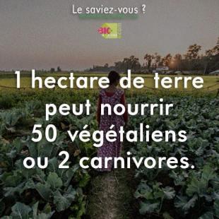 ecologie_0002