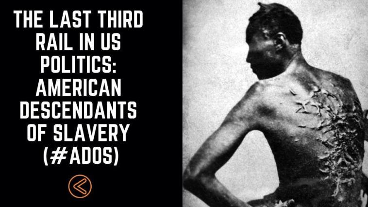 The Last Third Rail In US Politics: American Descendants of Slavery (#ADOS) 18