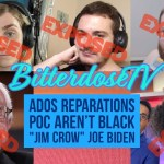 Response to Riley Grace Roshong: How The Left Is Harmful To ADOS - Vaush vs Tim Pool 14