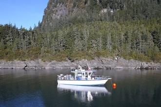 Sitka Fishing Charter