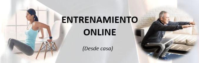 entrenamiento online.JPG