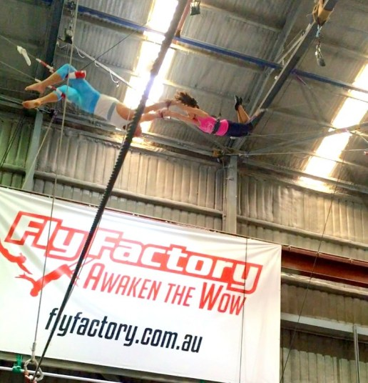 Flying Trapeze Review: Fly Factory by Mum2Athletes
