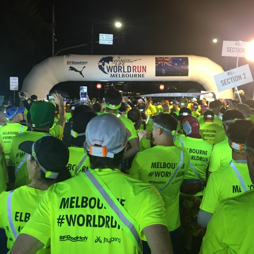 Have you run in the Wings For Life #worldrun?