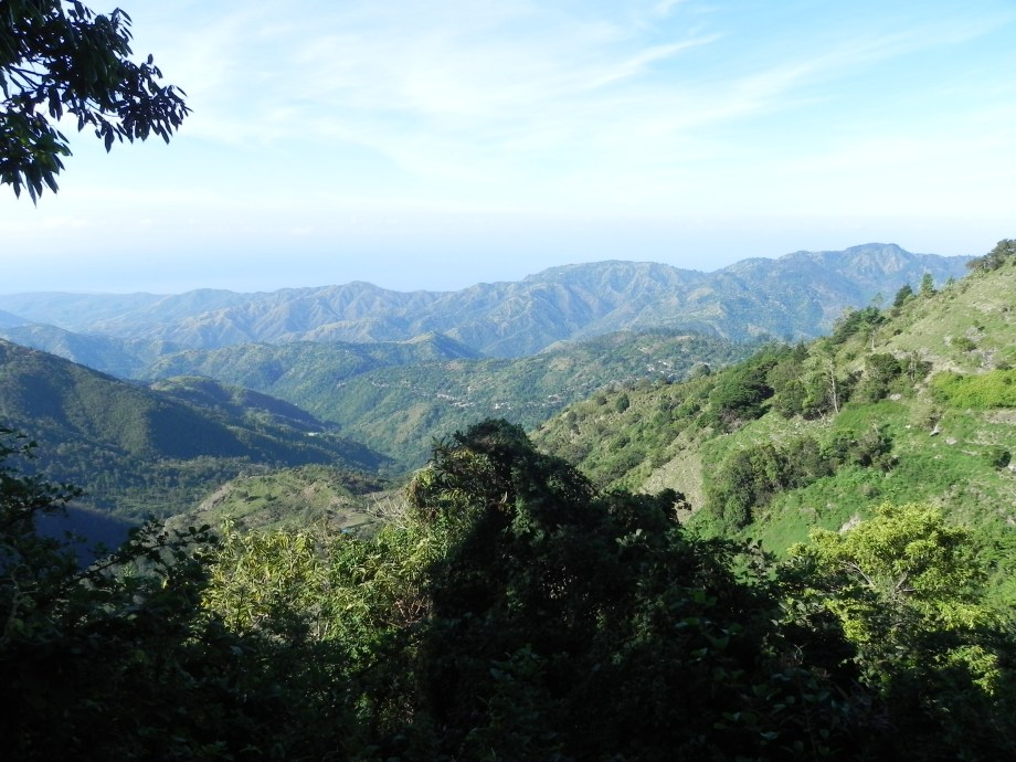 Plan your vacation with Active Caribbean Travel – Have fun hiking Blue Mountain Peak Trail on Jamaica with a knowledgeable guide.