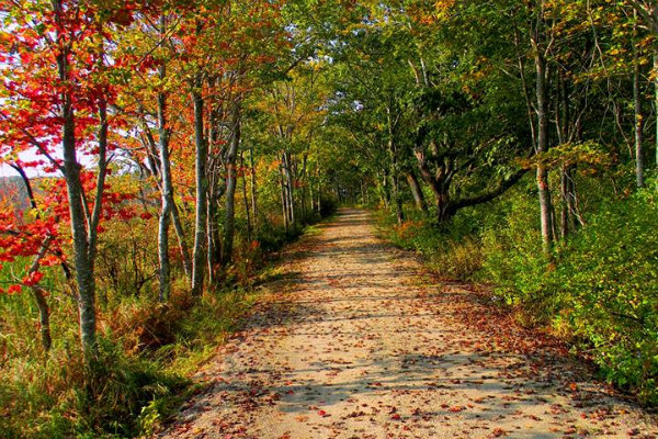 the rachel carson trail is located just north of pittsburgh pennsylvania