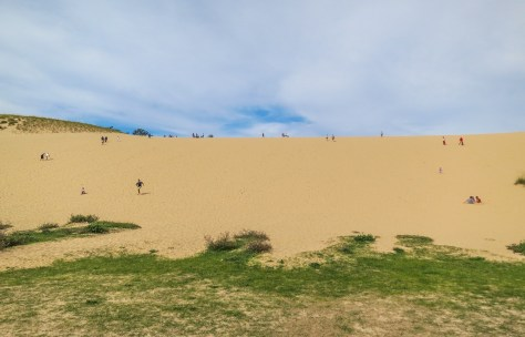 The Dune Climb at Sleeping Bear