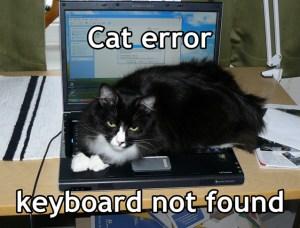 Cat Error