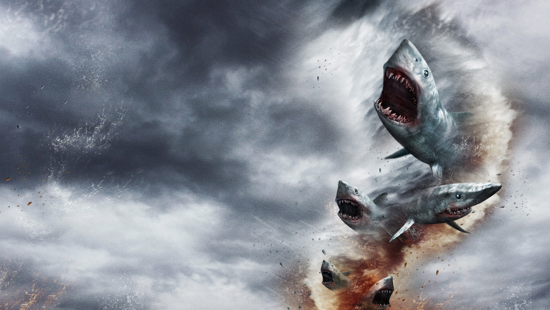 Sharknado Terrorizes Northern California Coast - Active NorCal