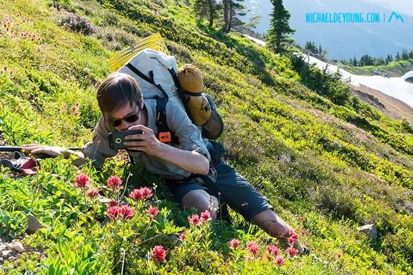 PCT in Goat Rocks Wilderness, Washington.  Leo photographing paintbrush