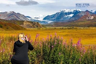 Late season fireweed mixes with fall colors below Gulkana Glacier in the Eastern Alaska Range. © Michael DeYoung